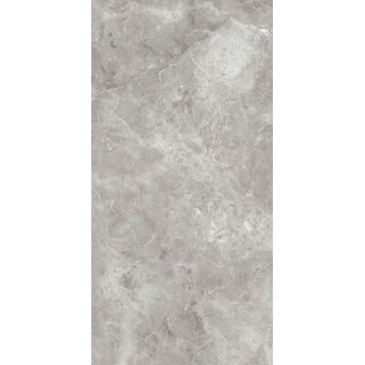 Asiago 12 x 24 Porcelain Filed Tile in Gray