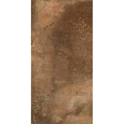 Argile 12 x 3 Bullnose Tile Trim in Brown