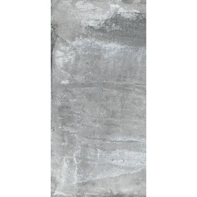 Argile 12 x 24 Porcelain Field Tile in Gray