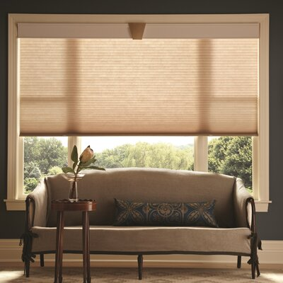 Elegant Neutrals Single Cell Cellular Shades
