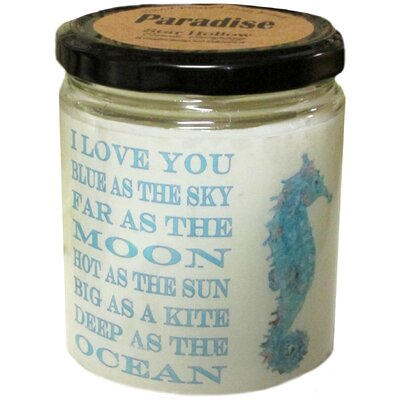 "Seahorse"" Ocean Breeze Jar Candle QJSEAHORSEOB"