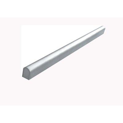 12 x 0.74 Border Edge Tile in Stainless Steel