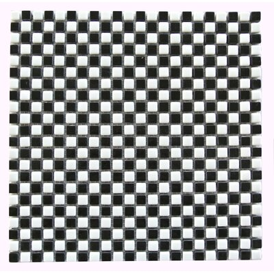 Full Body 0.5 x 0.5 Glass Mosaic Tile in Black/White