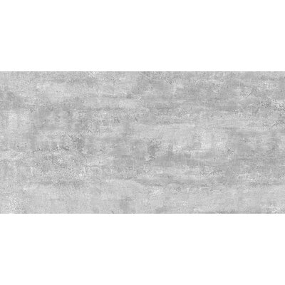 Thin Porcelain 23.6 x 11.8 Porcelain Field Tile in Steel Gray