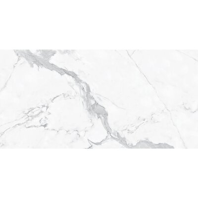 Thin Porcelain 35.4 x 70.9 Porcelain Field Tile in Light Gray Calacatta