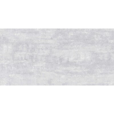 Thin Porcelain 23.6 x 11.8 Porcelain Field Tile in Glacier Gray