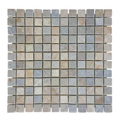 0.87 x 0.87 Stone Mosaic Tile in Atacama