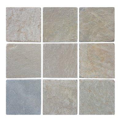 3.89 x 3.89 Stone Mosaic Tile in Atacama