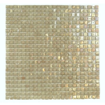 Classic Recycled 0.38 x 0.38 Glass Mosaic Tile in Peach