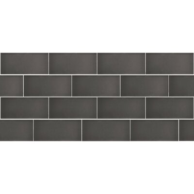 Secret Dimensions 3 x 6 Glass Subway Tile in Frosted Gray