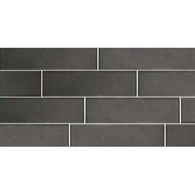 Secret Dimensions 3 x 12 Glass Subway Tile in Frosted Gray