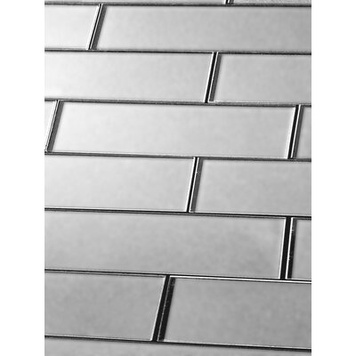 Secret Dimensions 3 x 12 Glass Subway Tile in Frosted Silver