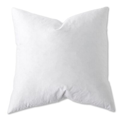 Natural Cotton Euro Pillow Size: 28 H x 28 W