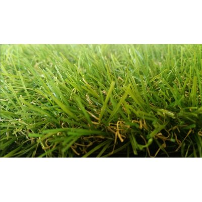 Nathalie Realistic Synthetic Grass Doormat Mat Size: 8 X 5