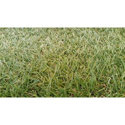 Lauryn Artificial Grass Patch Utility Mat Mat Size: 24 x 20