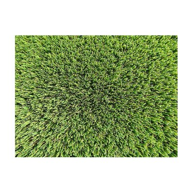 Lizbeth Grass Patch Utility Mat Mat Size: 6 X 4