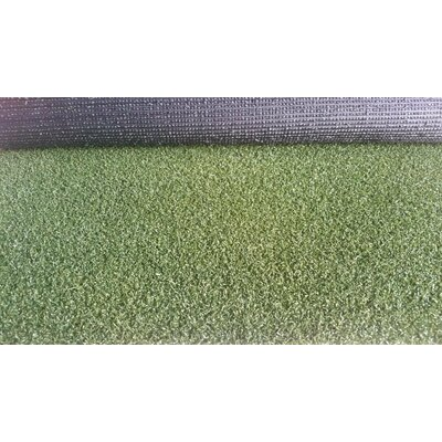 Lizbeth Grass Rug Utility Mat Mat Size: 5 X 3