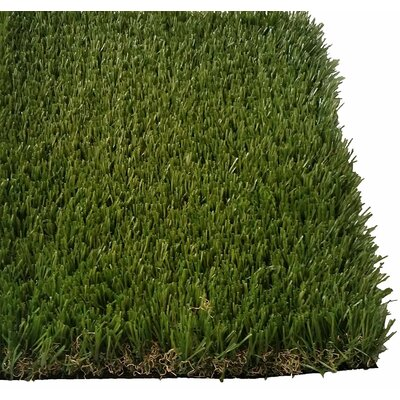 Nathalie Synthetic Grass Doormat Mat Size: 10 X 8