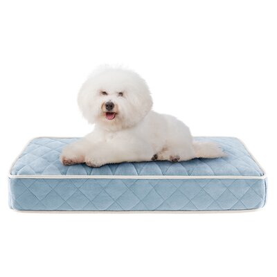 Tavis Quilted Memory Foam Orthopedic Pillow Dog Bed Size: 30 L x 20 W, Color: Blue