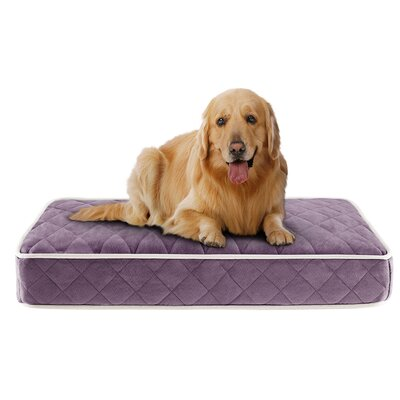 Tavis Quilted Memory Foam Orthopedic Pillow Dog Bed Size: 44 L x 35 W, Color: Purple