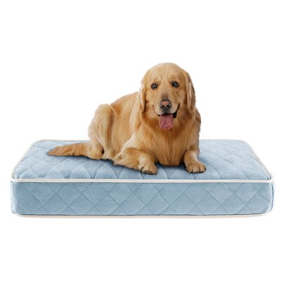 Tavis Quilted Memory Foam Orthopedic Pillow Dog Bed Size: 44 L x 35 W, Color: Blue