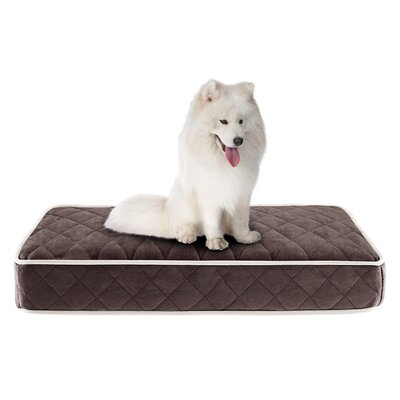 Tavis Quilted Memory Foam Orthopedic Pillow Dog Bed Color: Chocolate, Size: 36 L x 27 W