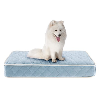 Tavis Quilted Memory Foam Orthopedic Pillow Dog Bed Size: 36 L x 27 W, Color: Blue