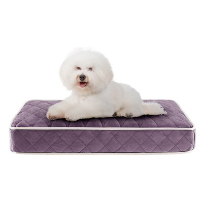 Tavis Quilted Memory Foam Orthopedic Pillow Dog Bed Size: 30 L x 20 W, Color: Purple