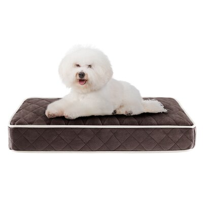 Tavis Quilted Memory Foam Orthopedic Pillow Dog Bed Size: 30 L x 20 W, Color: Chocolate