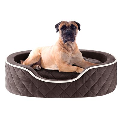 Renny Quilted Memory Foam Orthopedic Oval Cuddler Bloster Dog Bed Size: 36 L x 24 W, Color: Chocolate