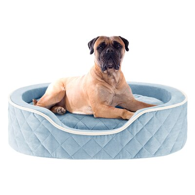 Renny Quilted Memory Foam Orthopedic Oval Cuddler Bloster Dog Bed Size: 36 L x 24 W, Color: Blue