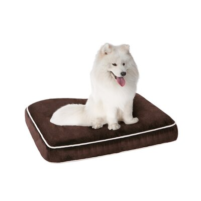 Keegan Memory Foam Orthopedic Napper with Zippered Cover Size: Medium (36 L x 27 W), Color: Brown