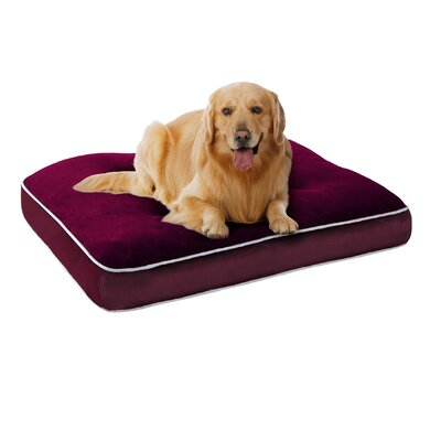 Keegan Memory Foam Orthopedic Napper with Zippered Cover Size: Small (30 L x 20 W), Color: Red