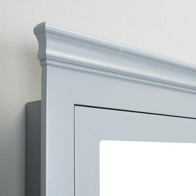 Piccirillo 24.5 x 34.5 Surface Mount Medicine Cabinet Finish: Gray