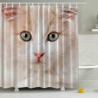 Cat Close up Print Shower Curtain