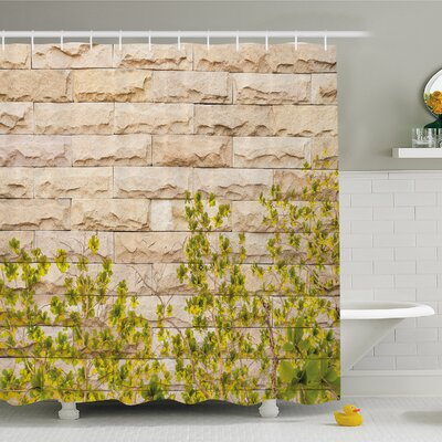 Rustic Home Ground Creepy Climbing Wood Ivy Plant Leaf on Brick Wall Nature Invasion Shower Curtain Set Size: 75 H x 69 W