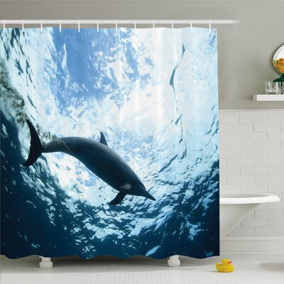 Sea Animals Bottlenose Dolphin Poops in Ocean Marine Underwater Aquatic Wildlife Shower Curtain Set Size: 75 H x 69 W