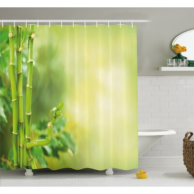 Spa Beautiful Asian Bamboos with other Tree Branches and Bushes Image Shower Curtain Set Size: 84 H x 69 W