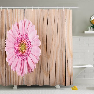Rustic Home Gerbera Daisy on Oak Dramatic South American Shower Curtain Set Size: 75 H x 69 W