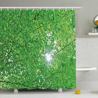 Forest Home Sun through Tree Branch and Leaf Top Relax Peaceful Environment Rural Design Shower Curtain Set Size: 75 H x 69 W