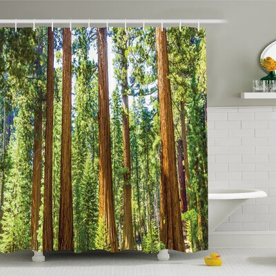 National Parks Home Branches Spring Conifers Sequoia Shower Curtain Set Size: 70 H x 69 W