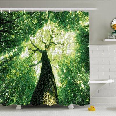 Forest Home Sunlights to Woodland Wild Habitat Summer Rays Dreamy Foliage Park Landscape Shower Curtain Set Size: 70 H x 69 W