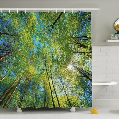 Forest Evergreen Back Nature Area Mother Earth Lime Trunk Mangrove Flora Willow Decor Shower Curtain Set Size: 75 H x 69 W