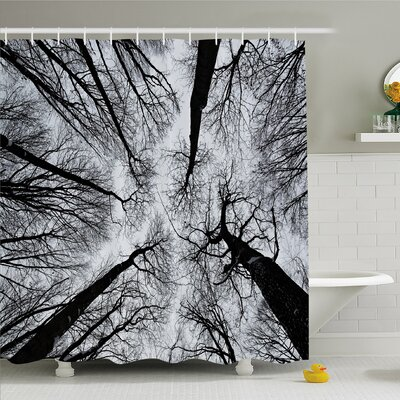 Forest Home Scary Winter Tops of the Trees Dark Dramatic Silhouettes Enchanted Image Shower Curtain Set Size: 84 H x 69 W