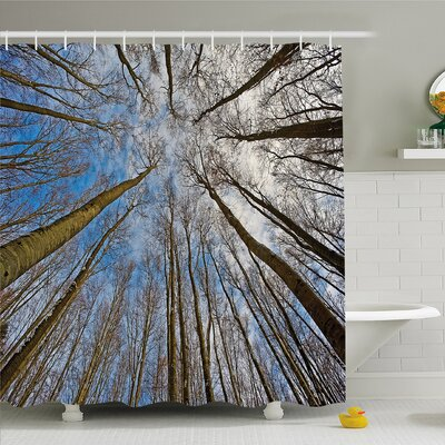 Forest Home Leafless Twiggy Tree Trunk Cloudy Morning Light�Shower Curtain Set Size: 75 H x 69 W