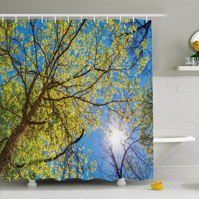 Forest Tree Branches Pastoral Lumber Wide Flourishing Natural Beauty Eco Backed Shower Curtain Set Size: 70 H x 69 W