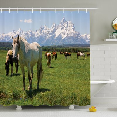 National Parks Home Equestrian Decor Snow Idyllic Mountain Peaks Arabian Horse Shower Curtain Set Size: 75 H x 69 W