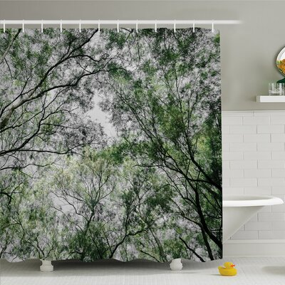 Forest Home Tree Branch in Spring Season Fairy Jungle Growth Nature Wood Shower Curtain Set Size: 75 H x 69 W