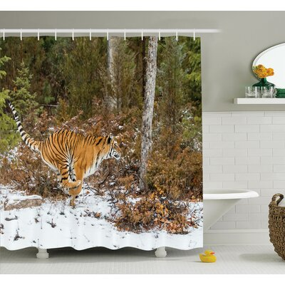 Animal Bengal Tiger Wild Shower Curtain Set Size: 70 H x 69 W