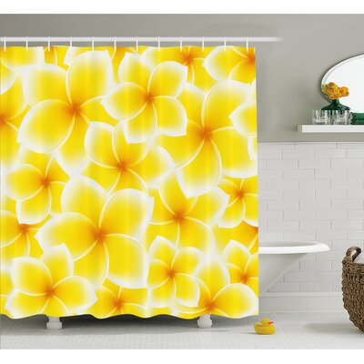Plumeria Frangipani Asian Cute Flower Blossom Pattern Hawaiian Artwork Shower Curtain Set Size: 70 H x 69 W